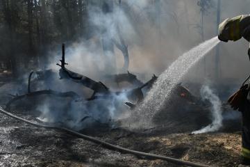 ルハンシク州で森林火災発生