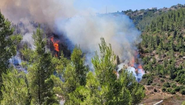 Біля Єрусалима розгорілися лісові пожежі