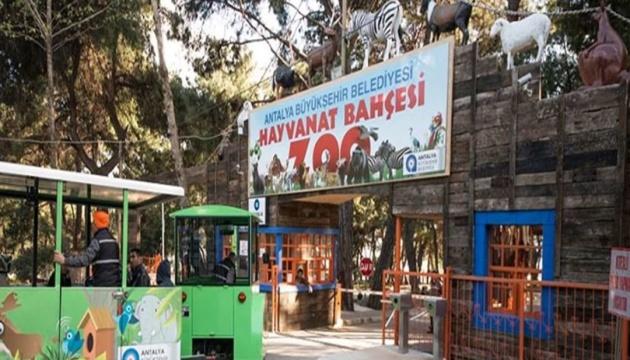 В Анталії через пожежі закрили один із найбільших у Туреччині зоопарків