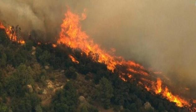 Украина готова помочь Албании в борьбе с лесными пожарами - МИД