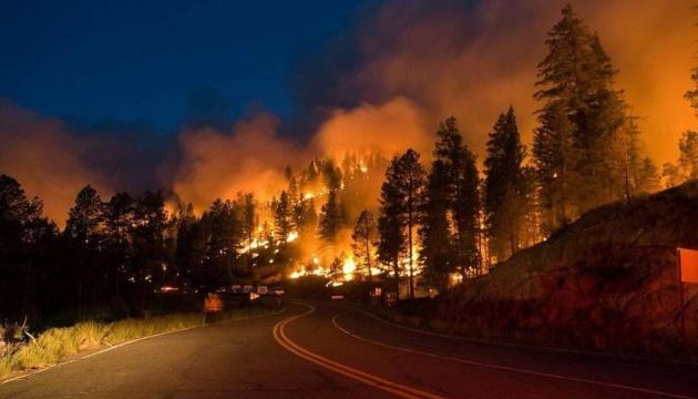 Более 200 пожаров: в России горит почти миллион гектаров леса