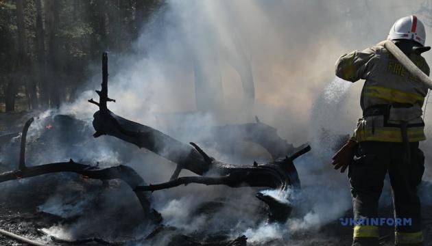 На Луганщине вспыхнул лесной пожар