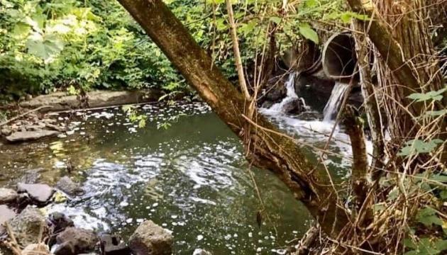 Житомирський водоканал продовжує скидати неочищені стоки в річку Тетерів