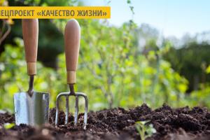На Житомирщине 25 предприятий изготавливают органическую продукцию