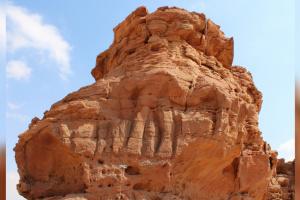В Саудовской Аравии нашли скульптуры верблюдов - старше Стоунхенджа и пирамид