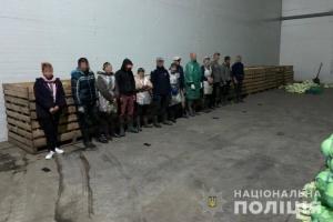 На Днепропетровщине из трудового рабства на ферме освободили 60 человек