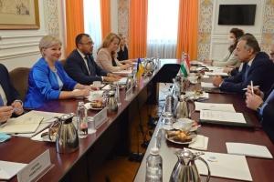 Підготовка до засідання комісії з нацменшин: представник МЗС Угорщини прибув до Києва