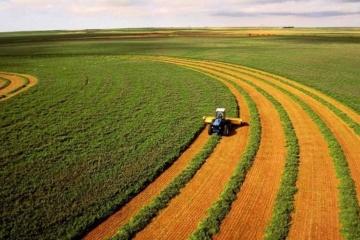 Öffnung des Bodenmarktes: In der Ukraine fast 19.000 Kaufverträge abgeschlossen