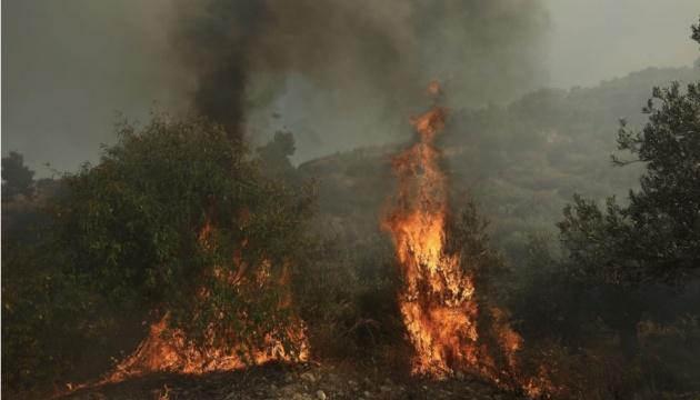 На Афоні спалахнула лісова пожежа