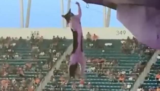 У Маямі вболівальники за допомогою прапора врятували кота, що зірвався з трибуни