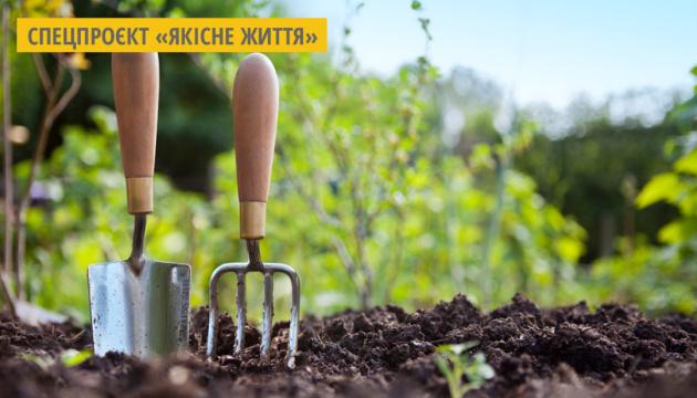 На Житомирщині 25 підприємств виготовляють органічну продукцію