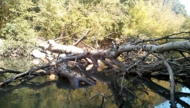 На Закарпатье чистят от мусора русло реки Боржава