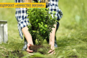 Во Львове создадут новое экопространство «Сад Здоровья»