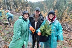 На Прикарпатті висадили понад 4 тисячі хвойних дерев