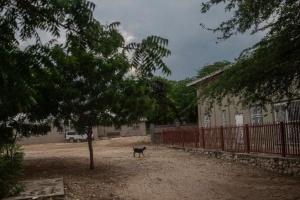На Гаити банда требует $17 миллионов выкупа за похищенных миссионеров