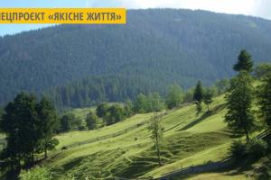 На Закарпатті досліджують найбільший в Європі буковий праліс