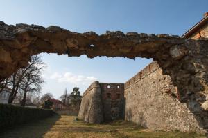 На реставрацію закарпатського замку та старовинної церкви потрібно 18,6 мільйонів гривень - ОДА