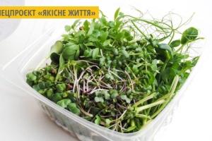 У Хмельницькому на вертикальній фермі вирощують органічну мікрозелень