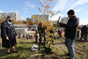 У Львові біля лікарні швидкої допомоги висадили «Сад Здоров'я»