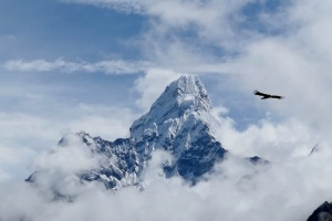 В горах Індії через снігопад загинули 11 туристів