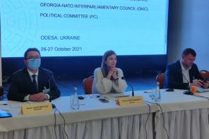Джапарова закликає Міжпарламентську асамблею НАТО сприяти деокупації Криму