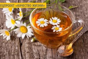 На Житомирщине  безработных женщин привлекли к созданию чаев