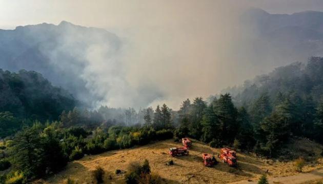 У турецькому Кемері горить ліс, гасять чотири вертольоти